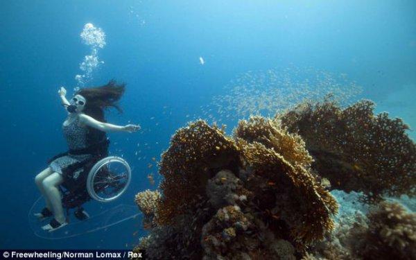 На инвалидной коляске - в подводные глубины