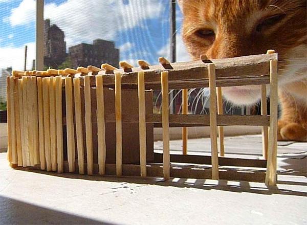 MeowHaus - дом для кошки с ограниченными возможностями