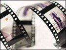 Минкультуры РФ с 2013 года финансирует дипломные фильмы выпускников ВГИКа