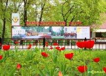Благоустройство Измайловского парка завершено