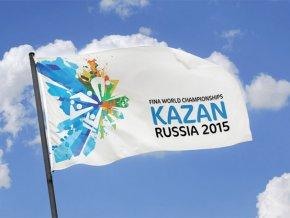 Образован оргкомитет по подготовке XVI чемпионата мира по водным видам спорта в Казани