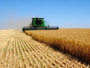 Россия и Туркменистан расширят сотрудничество в сфере сельского хозяйства